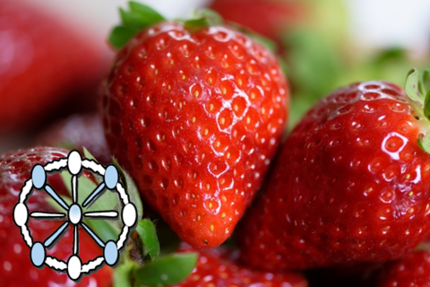 <strong>Proficiency test [TestQual 124] Pesticides in strawberry. FINAL REPORT</strong>